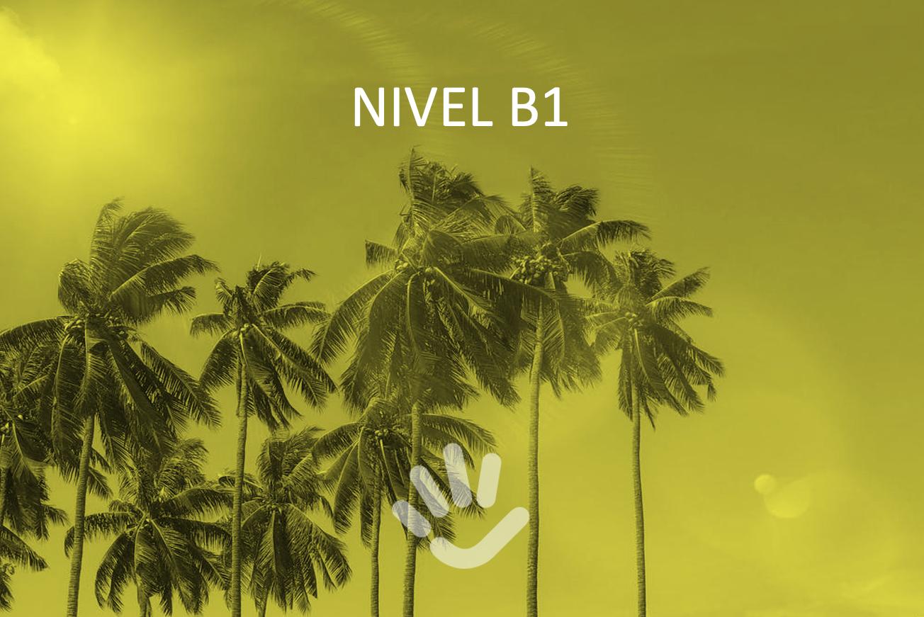 Programa de español comunicativo (B1)